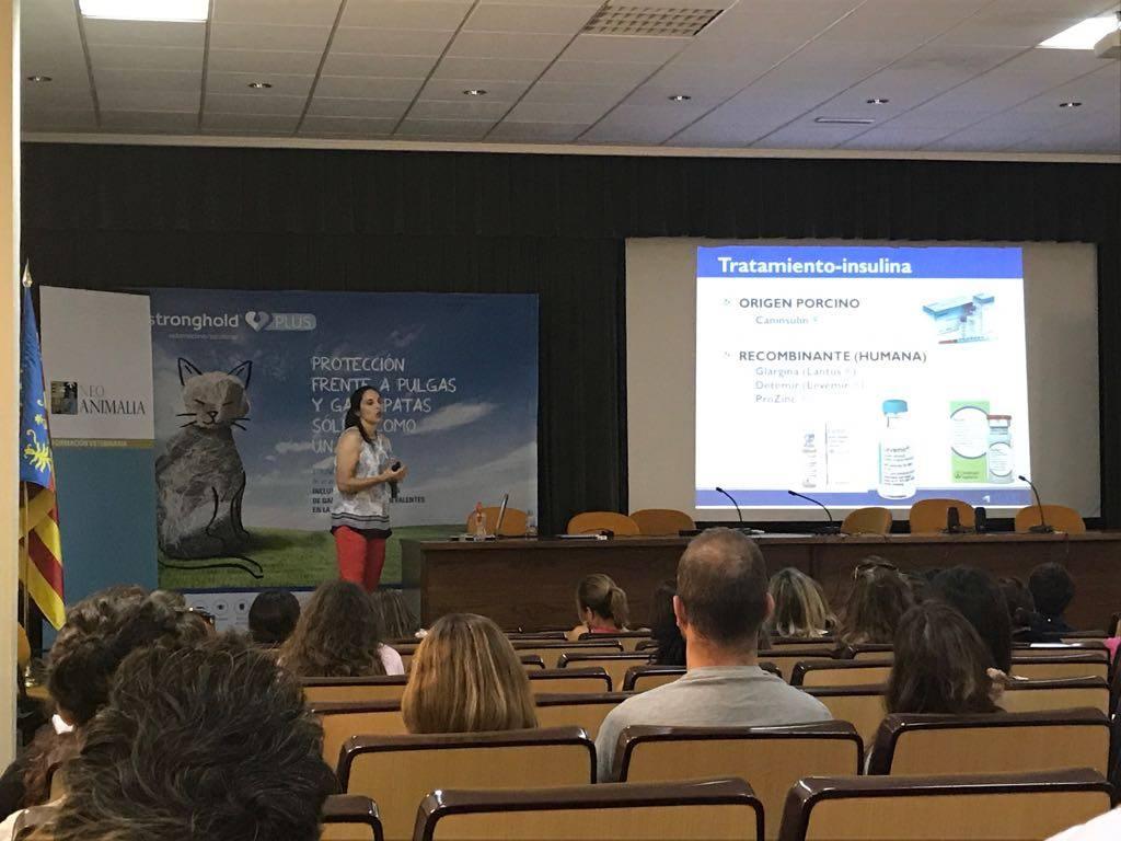 Carolina Arenas Congreso Medicina Interna veterinaria