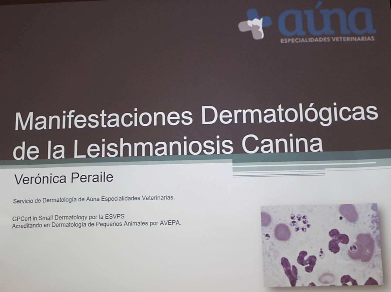 curso dermatologia leishmaniosis 2