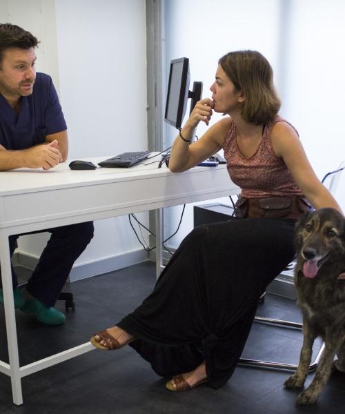 remitir un caso al hospital veterinario auna en valencia
