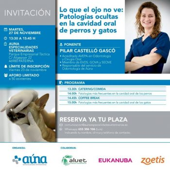curso gratuito odontologia veterinaria_auna valencia